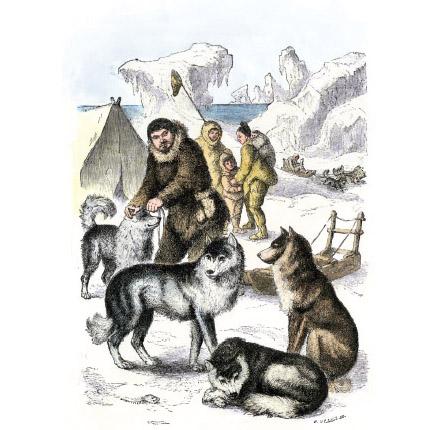 Eszkimó család, szánhúzó kutyáival